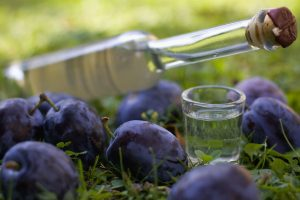 62518679 - plum brandy or schnapps with fresh and ripe plums